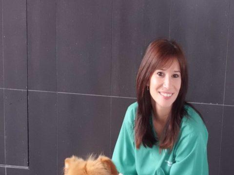 clinica-veterinaria-lauro_alhaurin00008